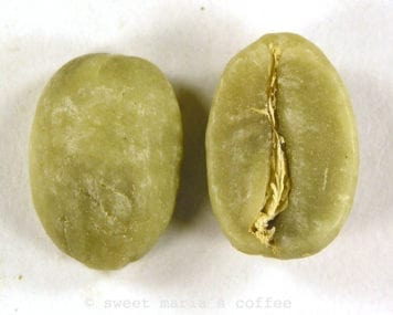green bean - Single Coffee Bean Roast Image - Degree of Roast