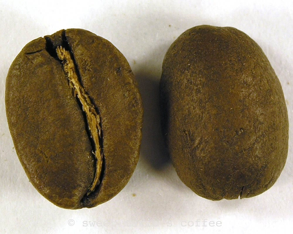 Ending of First Crack - 435 degrees F - Coffee bean macro image during roasting