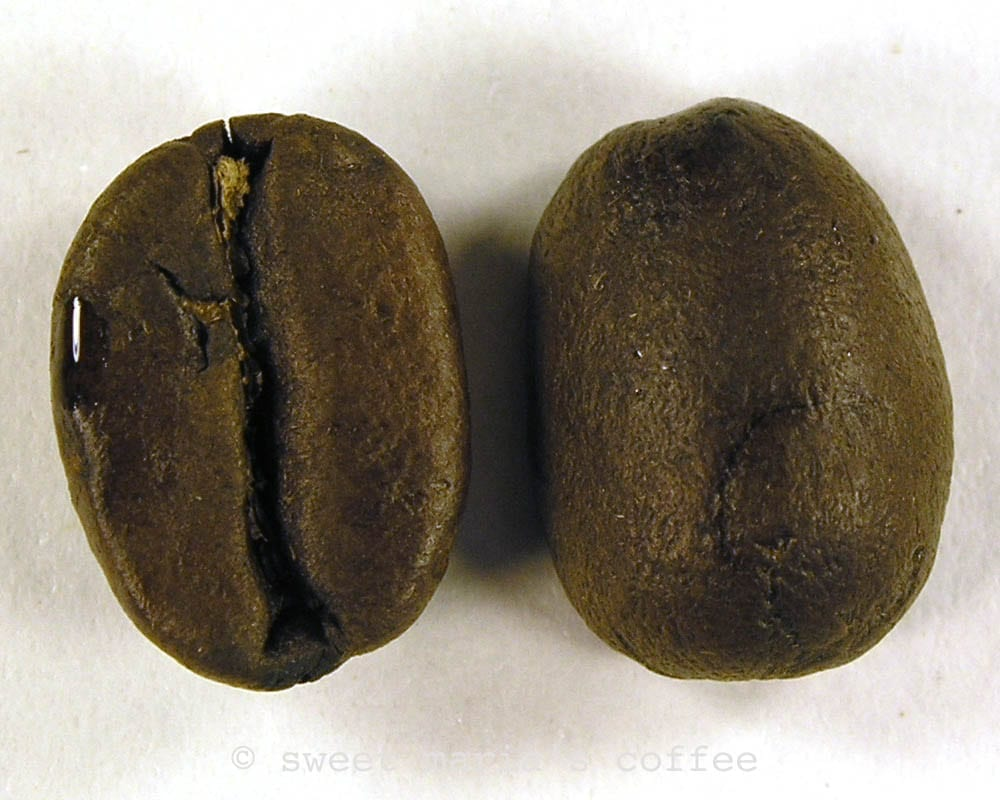 Ending of Second Crack - 465 degrees F - Coffee bean macro image during roasting