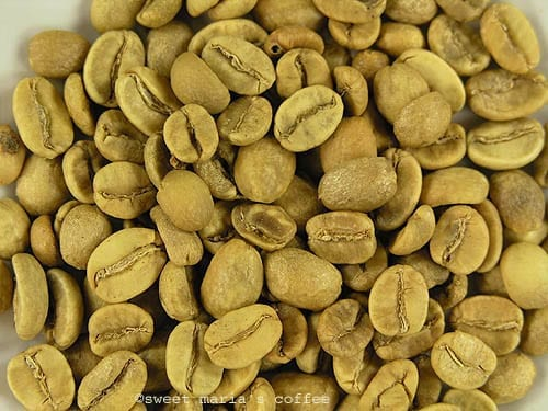 327 degrees F - Coffee bean macro image yellowing stage of roasting