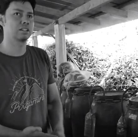Coffee And Microorganisms: Los Palomos Colombia