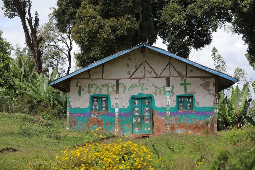 The highlands of Ethiopia are beautiful, especially the areas above the altitudes for coffee production. These are mostly used for grazing, and some crops, especially grain. Most abodes are undecorated here, so I tend to snap photos of painted ones as we pass on by,.  I don't think people have money for paint. But it's wonderful to see houses like this.