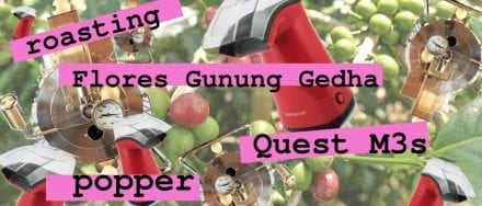 Roasting Flores Gunung Gedha on a Popcorn Popper and Quest M3s