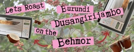Behmor Roast Profile: Burundi Kayanza Dusangirijambo Coop