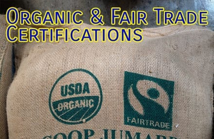 Organic Certification and Green Coffee