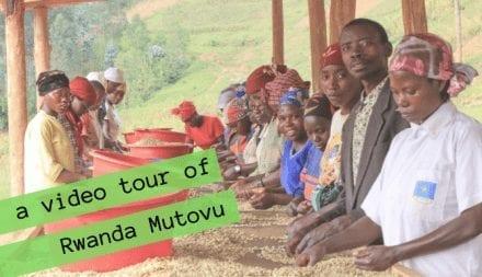 Rwanda Mutovu Video Tour: Incremental Improvements to a Competition-Level Cup
