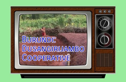 Video: Visiting Dusangirijambo, a Burundi Coffee Cooperative