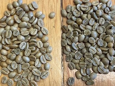 Brazil Coffee Grades