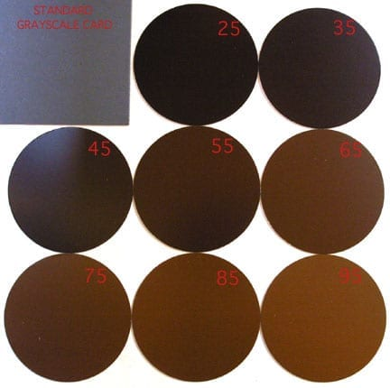 Coffee roasting color tiles disks SCAA Agtron