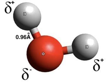 Water Molecule Structure