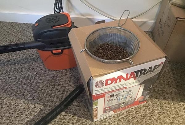 This colander, cardboard box and shop vac are an easy cooling tray hack capable of cooling your roast batch in less than 3 minutes.