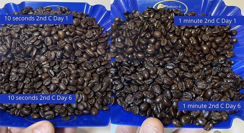 Comparing two different dark roasts straight from the roaster and after 6 days of rest, the oils are much more present after resting.