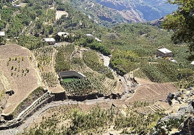 Yemen coffee lands on terraces