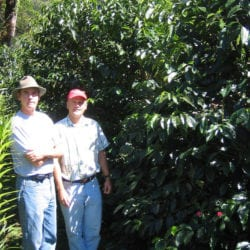 Panama Coffee Harvest Visits (January 2006)