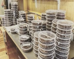 tall stacks of roasted green coffee samples