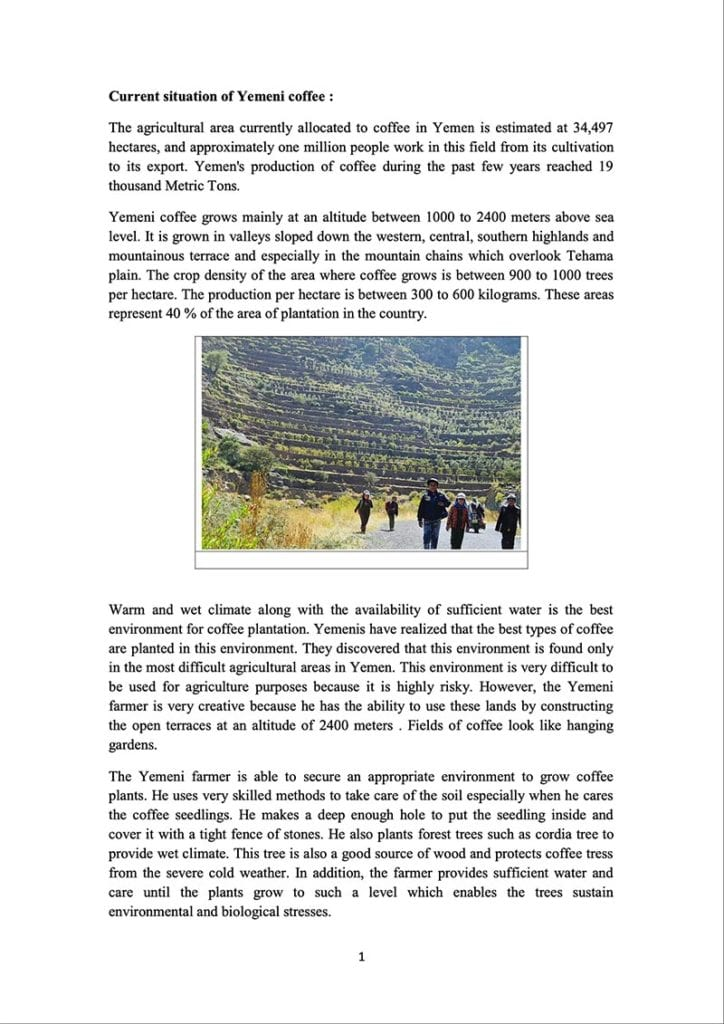 Page 1 of a document about the Yemeni green coffee sector