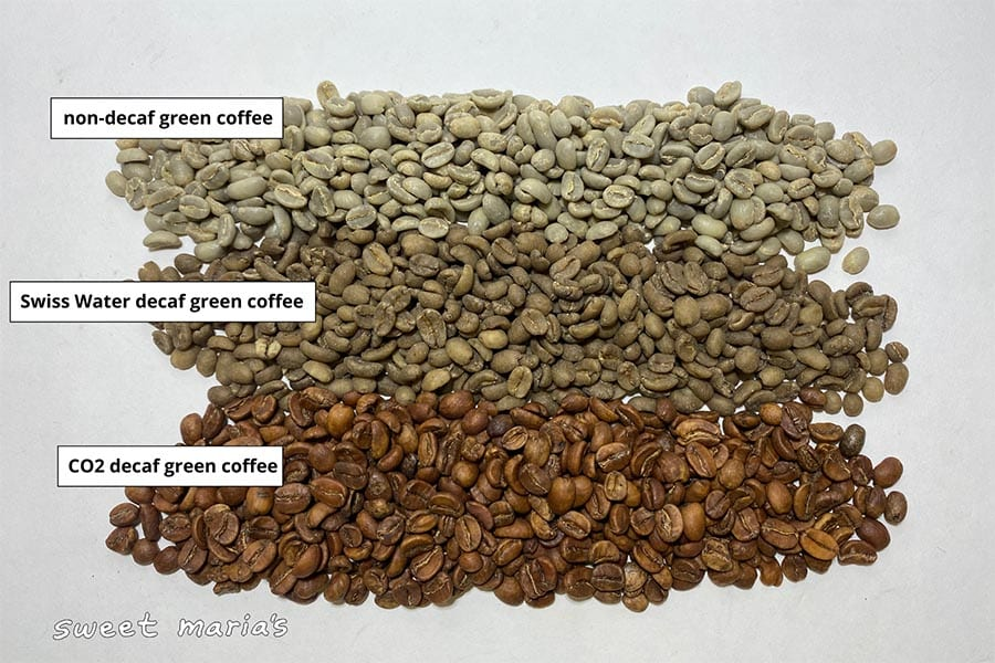 Comparing green coffees side by side; non-decaf top, Swiss Water Process decaf middle, and CO2 decaf at bottom.