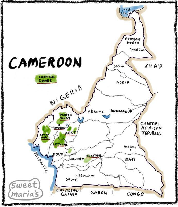 Cameroon Coffee Map Sweet Marias