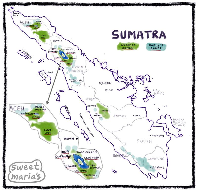 Sumatra Coffee Map Indonesia Sweet Marias